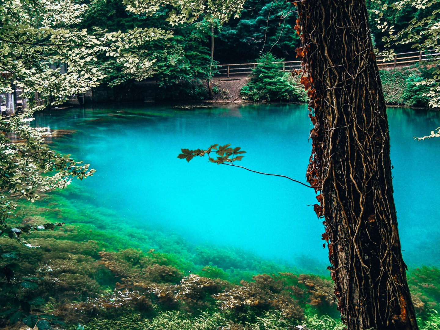 Blautopf, Germany