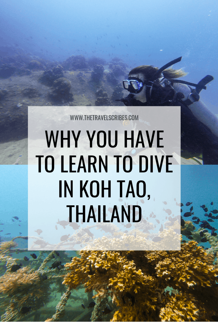 Pinterest Graphic - Diving in Koh Tao