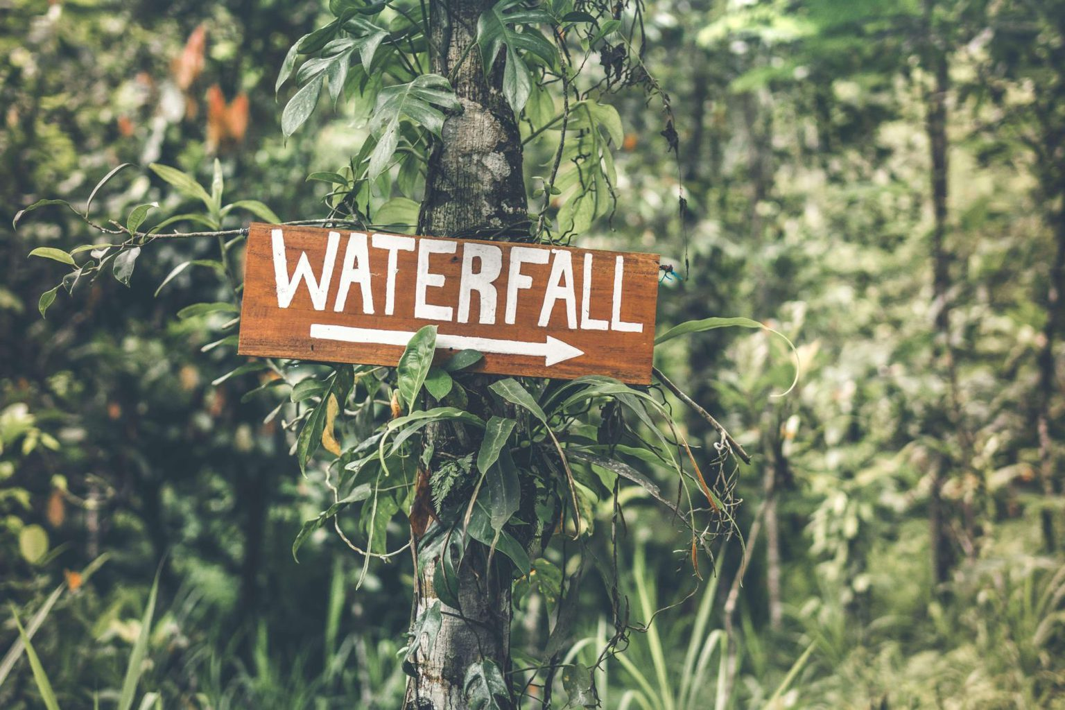 Melanting waterfall sign
