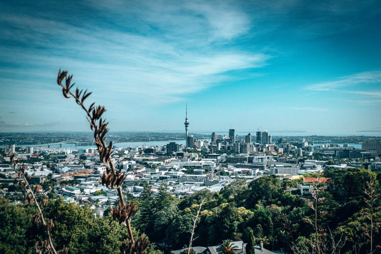 View from Mount Eden Auckland
